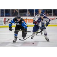 Du-Four Point Night Leads Thunder Past Oilers