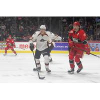 Monsters Tripped up by Griffins, 4-2