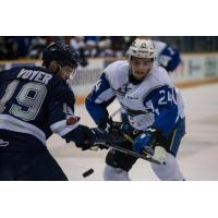 SEA DOGS END ROAD TRIP WITH LOSS INRIMOUSKI