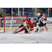 Giants Fall 2-0 to Winterhawks at Home Saturday