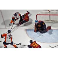 Firebirds Unable to Solve DiPietro, Fall in Windsor 1-0 Sunday