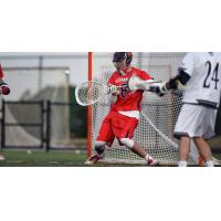 Cannons Add 11 from Supplemental Draft; Trade for All-Star James Pannell