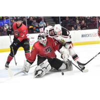 Cleveland Monsters Battle the Grand Rapids Griffins