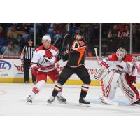 Lehigh Valley Phantoms vs. the Charlotte Checkers