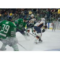 Florida Everblades vs. Greenville Swamp Rabbits