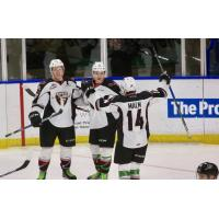 Vancouver Giants Celebrate A Goal