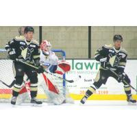 Wheeling Nailers in Front of the Toledo Walleye Net