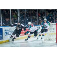 Matt Barber of the Vancouver Giants vs. the Kelowna Rockets