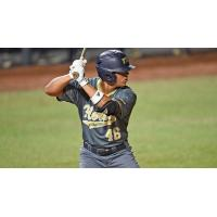 Florida International University Outfielder Juan Teixeria