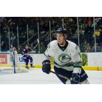 Florida Everblades in Action