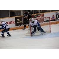 Saint John Sea Dogs Goalie Alex D'Orio vs. Cape Breton