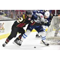 Cleveland Monsters Fight for the Puck vs. the Manitoba Moose