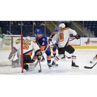 Lehigh Valley Phantoms Goaltender Dustin Tokarski Stuffs the Bridgeport Sound Tigers