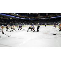 Lehigh Valley Phantoms vs. the Bridgeport Sound Tigers
