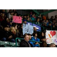Prince George Cougars Fans