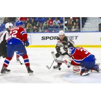 James Malm of the Vancouver Giants Races for a Loose Puck in Front of the Edmonton Oil Kings Goal