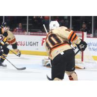 Greg Carey of the Lehigh Valley Phantoms faces the goal