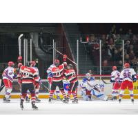 Ottawa 67's celebrate a goal against the Kitchener Rangers