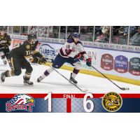 Saginaw Spirit vs. the Sarnia Sting
