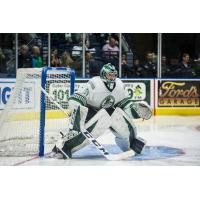 Florida Everblades Goaltender Martin Ouellette