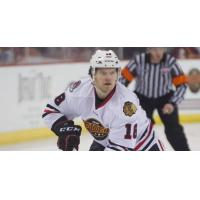 Forward Stephen Collins with the Indy Fuel