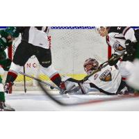 Vancouver Giants Goaltender David Tendeck sprawls for a save vs. the Evertt Silvertips