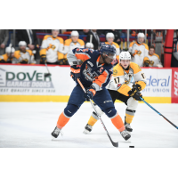 Flint Firebirds vs. the Sarnia Sting