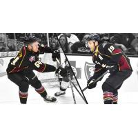 Forwards Jordan Maletta and Carter Camper with the Cleveland Monsters