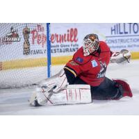 Goaltender Tomas Sholl with the Adirondack Thunder