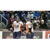 The Flint Firebirds offer congratulations on a goal at Guelph