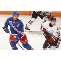 Kitchener Rangers vs. the Guelph Storm