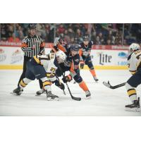 Flint Firebirds vs. the Erie Otters
