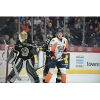 Flint Firebirds vs. the London Knights
