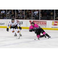 Steven McParland of the Idaho Steelheads vs. the Kansas City Mavericks