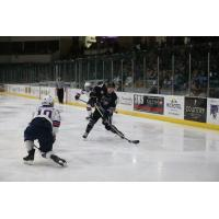 Tri-City Storm Forward Blais Richartz
