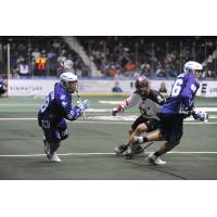 Cody Jamieson of the Rochester Knighthawks vs. the Calgary Roughnecks