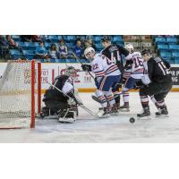 Vancouver Giants Goaltender Trent Miner turns aside a Kamloops Blazers shot