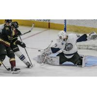 Jacksonville IceMen Goaltender Austin Lotz turns away the Atlanta Gladiators