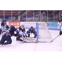 Idaho Steelheads Goaltender Tomas Sholl stops the South Carolina Stingrays