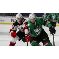 Binghamton Devils vs. the Charlotte Checkers