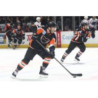 Lehigh Valley Phantoms control the puck vs. the Springfield Thunderbirds
