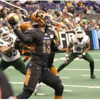 Arizona Rattlers Quarterback Jeff Ziemba