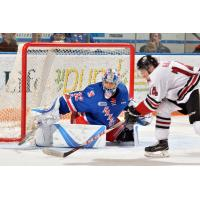 Kitchener Rangers Goaltender Mario Culina stops the Guelph Storm