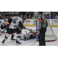 Jacksonville IceMen vs. the Greenville Swamp Rabbits