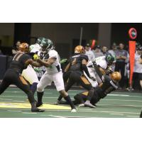 Arizona Rattlers' Davontae Merriweather and co. take down a Nebraska Danger ballcarrier