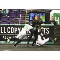 Allen Chapman of the Arizona Rattlers makes a catch vs. the Nebraska Danger