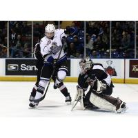 Vancouver Giants Goaltender Trent Miner readies for a Victoria Royals' shot