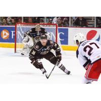 Hershey Bears Right Wing Garrett Mitchell faces the Rochester Americans