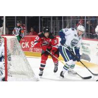 Utica Comets Defenseman Guillaume Brisebois battles the Binghamton Devils for the puck