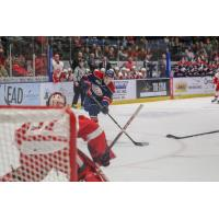 Saginaw Spirit Left Wing Nicholas Porco takes a shot against the Sault Ste. Marie Greyhounds